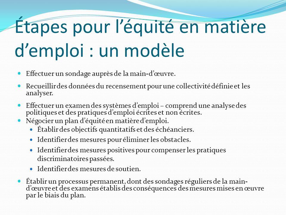 Étapes pour léquité en matière demploi : un modèle Effectuer un sondage auprès de la main-dœuvre.