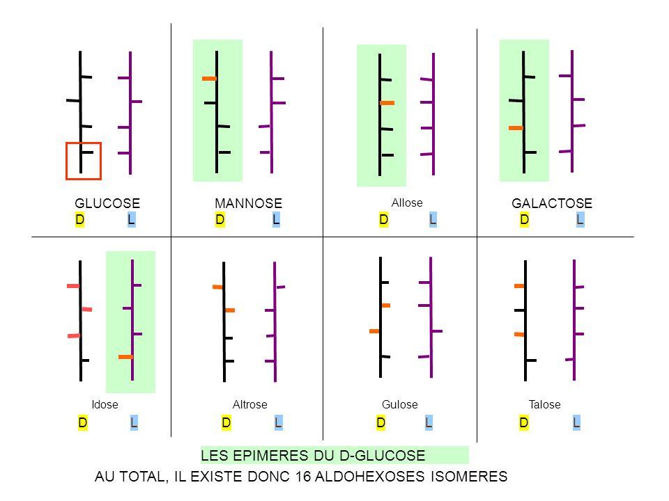 D-Glucose (forme linéaire) CYCLISATION DU D-GLUCOSE alpha D- GLUCOPYRANOSE OH CH 2 OH O OH H CH 2 OH HO C O C C C C OH H H H H H C CH 2 OH OH O H O H CH 2 OH O OH H béta D- GLUCOPYRANOSE 63% 37% <1% C1 C5 CO