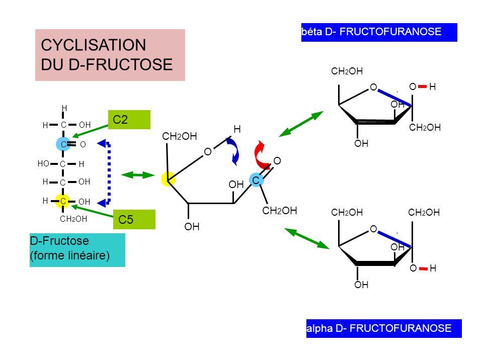 2 3 4 5 6 1 RECAPITULATIF Série D / Série L = le –OH au niveau de lavant dernier carbone (C voisin du –CH 2 OH porteur du n° le plus élevé) est situé à DROITE dans la série D, à GAUCHE dans la série L LES CONVENTIONS Représentation linéaire (verticale) de Fischer avec la fonction aldéhyde (ou cétone) vers en haut Numérotation des atomes de carbone en commençant par le haut (Formule de Fischer).
