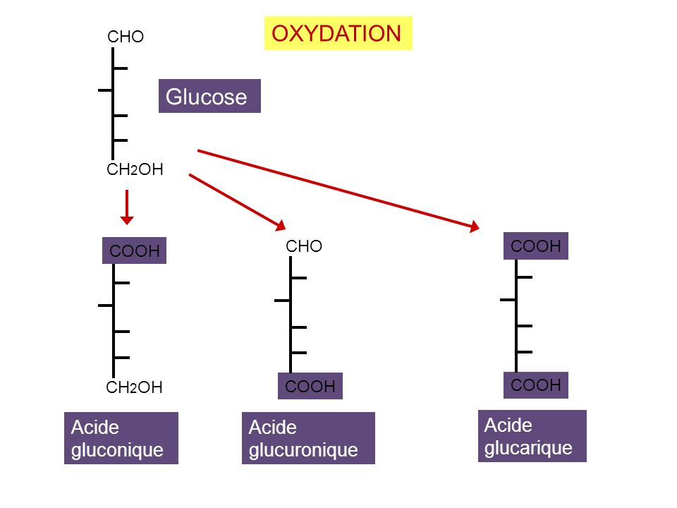 CHO CH 2 OH COOH CH 2 OH Glucose Acide gluconique OXYDATION CHO COOH Acide glucuronique COOH Acide glucarique