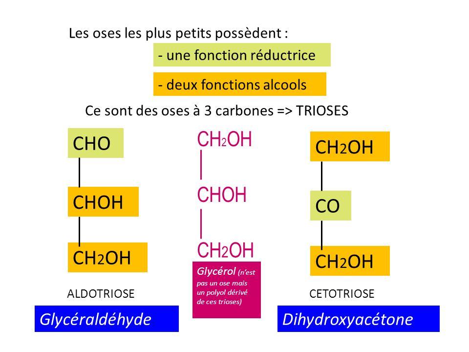 C CH 2 OH CHO OH H C CH 2 OH CHO OH H C CH 2 OH CHO H OH AB A et B ne sont pas superposables CHO CH 2 OH CHO HO C C OH H H L D Représentation de Fischer B est limage de A dans un miroir: B est l énantiomère ou isomère optique de A - Glycéraldéhyde