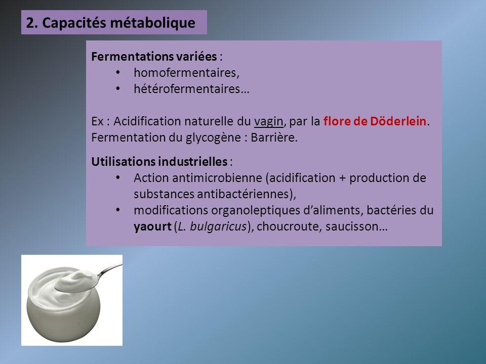2. Capacités métabolique Fermentations variées : homofermentaires, hétérofermentaires… Ex : Acidification naturelle du vagin, par la flore de Döderlei