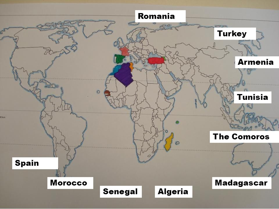 ……………………………………………… Beaucoup délèves du collège ont des origines étrangères.