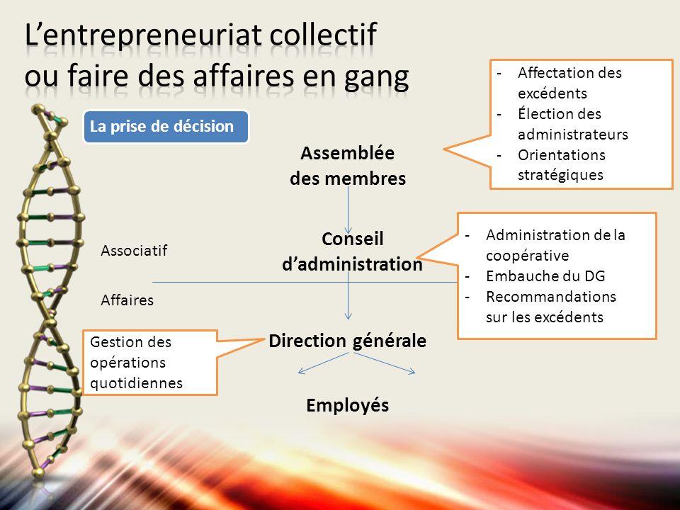 Assemblée des membres Conseil dadministration Direction générale Associatif Affaires Employés -Affectation des excédents -Élection des administrateurs
