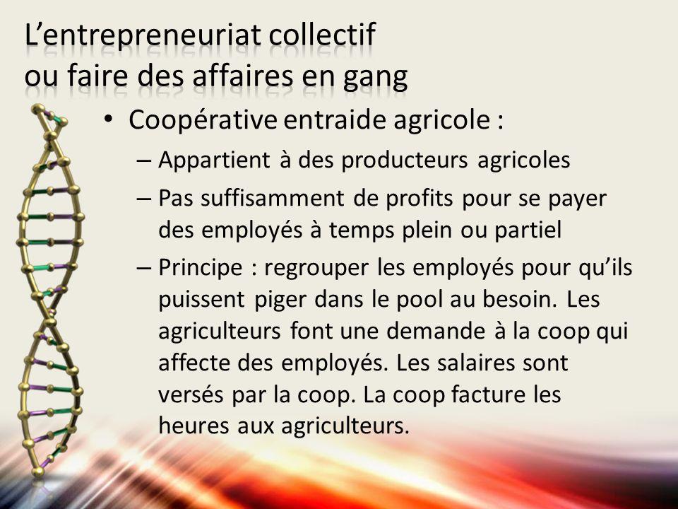 Coopérative entraide agricole : – Appartient à des producteurs agricoles – Pas suffisamment de profits pour se payer des employés à temps plein ou par