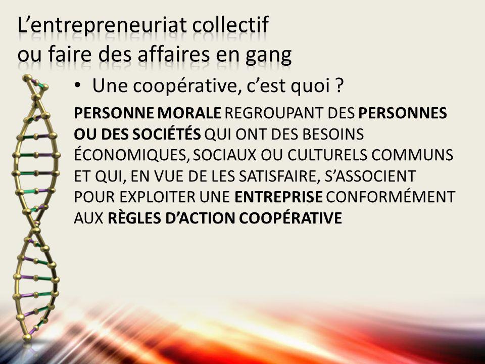 Coopérative de solidarité Type de coopérative qui regroupe la plus grande variété de membres : – Membres travailleurs – Membres utilisateurs-producteurs – Membres utilisateurs-consommateurs – Membres de soutien