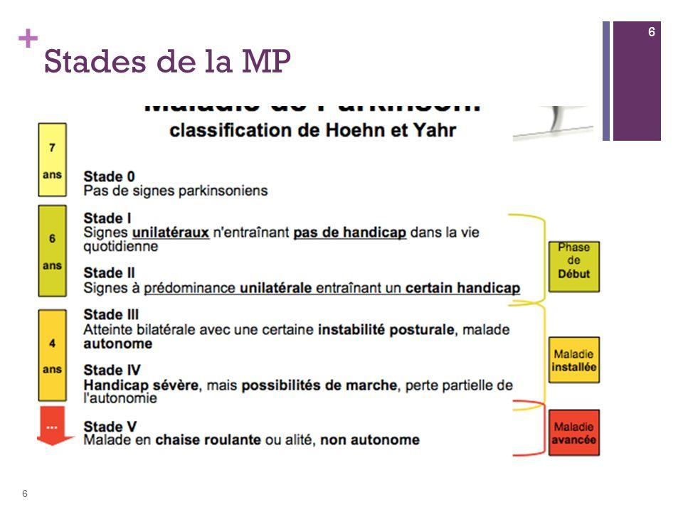 + Stades de la MP 6 6