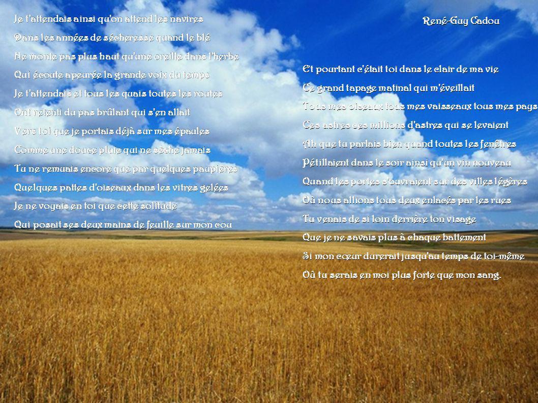 Je t'attendais ainsi qu'on attend les navires Dans les années de sécheresse quand le blé Ne monte pas plus haut qu'une oreille dans l'herbe Qui écoute
