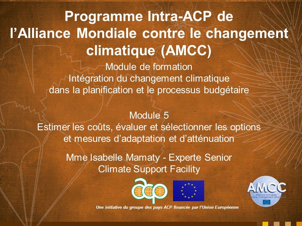 Une initiative du groupe des pays ACP financée par lUnion Européenne Programme Intra-ACP de lAlliance Mondiale contre le changement climatique (AMCC) Module de formation Intégration du changement climatique dans la planification et le processus budgétaire Module 5 Estimer les coûts, évaluer et sélectionner les options et mesures dadaptation et datténuation Mme Isabelle Mamaty - Experte Senior Climate Support Facility
