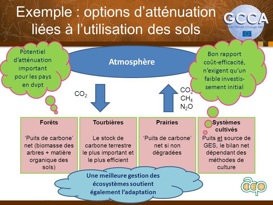 Exemple : options datténuation liées à lutilisation des sols 11 Forêts Puits de carbone net (biomasse des arbres + matière organique des sols) Tourbiè