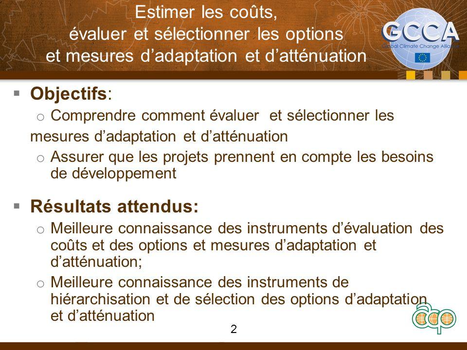 Estimer les coûts, évaluer et sélectionner les options et mesures dadaptation et datténuation Objectifs: o Comprendre comment évaluer et sélectionner
