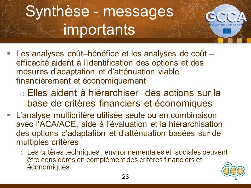 Synthèse - messages importants Les analyses coût–bénéfice et les analyses de coût – efficacité aident à lidentification des options et des mesures dad