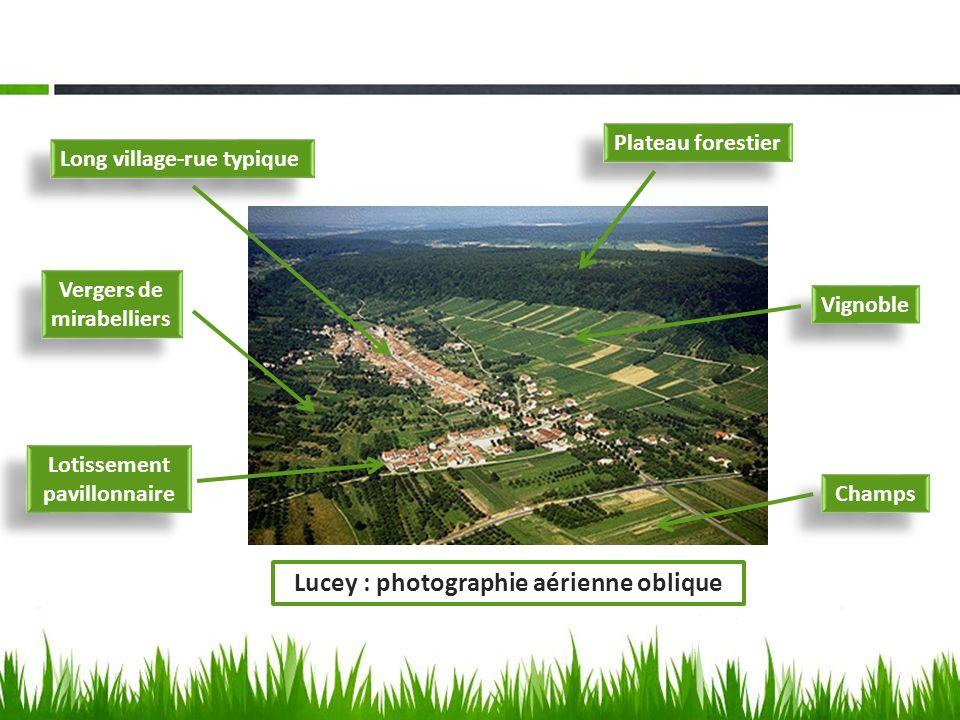 Long village-rue typique Lotissement pavillonnaire Vignoble Vergers de mirabelliers Plateau forestier Champs Lucey : photographie aérienne oblique