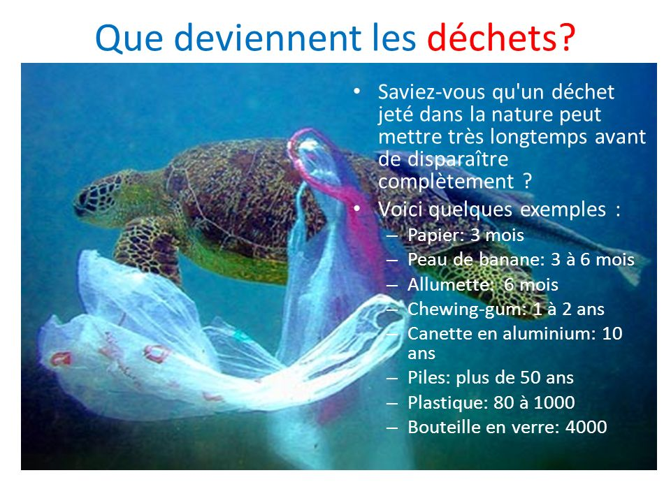 Que deviennent les déchets? Saviez-vous qu'un déchet jeté dans la nature peut mettre très longtemps avant de disparaître complètement ? Voici quelques