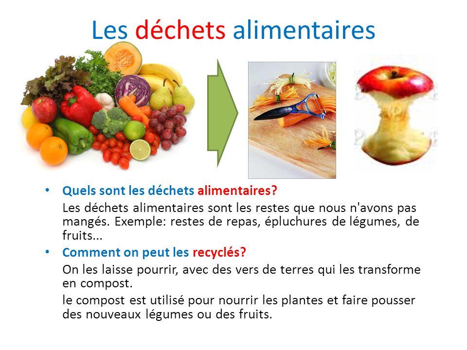 Les déchets alimentaires Quels sont les déchets alimentaires? Les déchets alimentaires sont les restes que nous n'avons pas mangés. Exemple: restes de