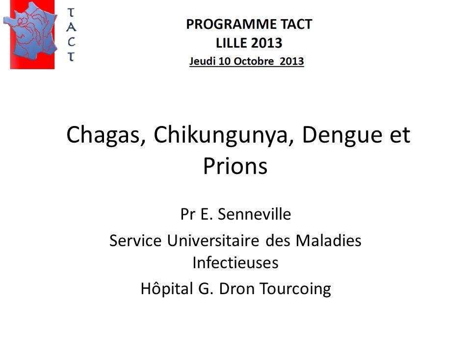Maladie de Chagas Trypanosoma cruzitriatome