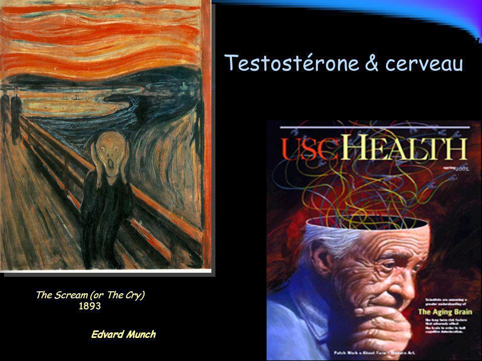 The Scream (or The Cry) 1893 Edvard Munch Testostérone & cerveau