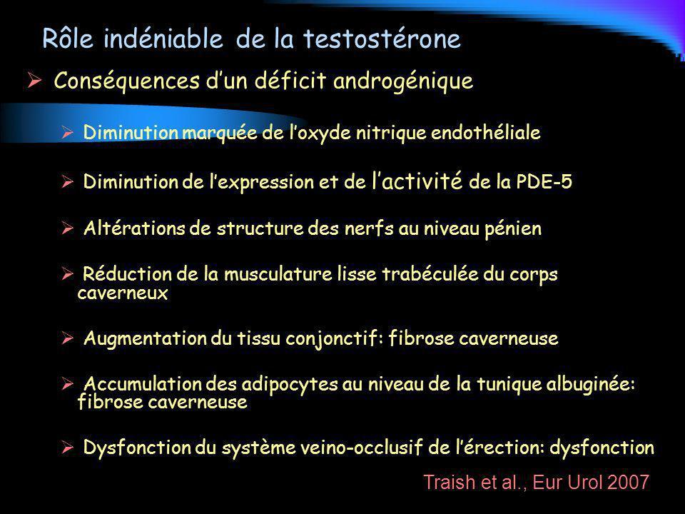 Rôle indéniable de la testostérone Conséquences dun déficit androgénique Diminution marquée de loxyde nitrique endothéliale Diminution de lexpression