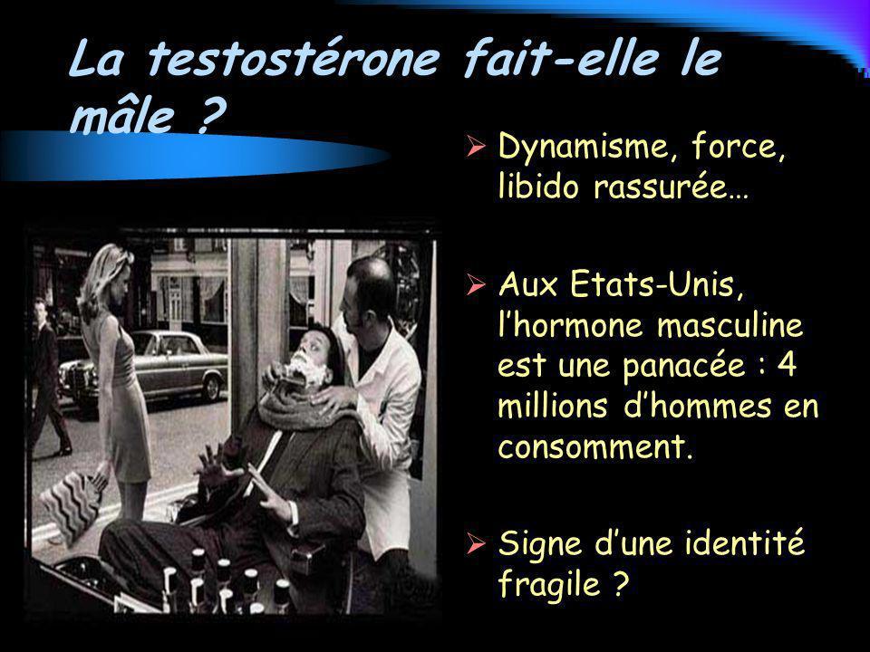La testostérone fait-elle le mâle ? Dynamisme, force, libido rassurée… Aux Etats-Unis, lhormone masculine est une panacée : 4 millions dhommes en cons