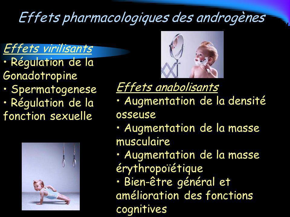 Effets pharmacologiques des androgènes Effets virilisants Régulation de la Gonadotropine Spermatogenese Régulation de la fonction sexuelle Effets anab