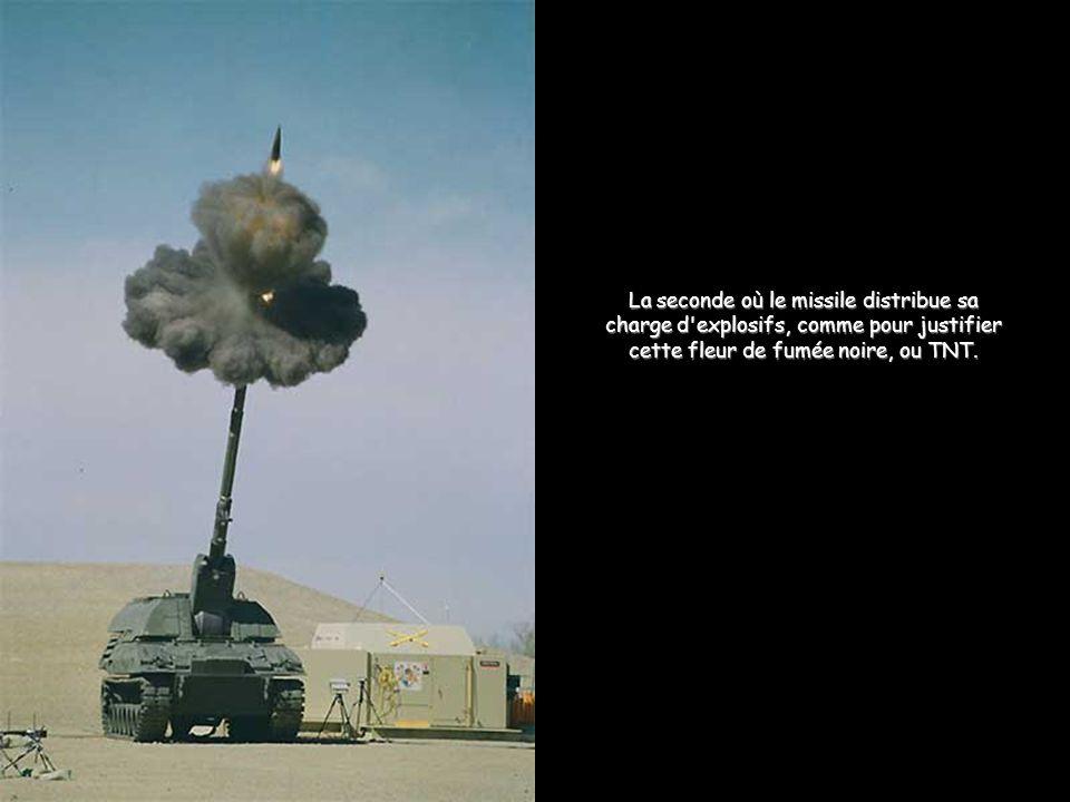 La seconde où le missile distribue sa charge d'explosifs, comme pour justifier cette fleur de fumée noire, ou TNT.