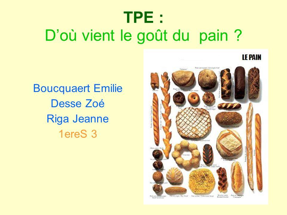 Schémas récapitulatifs Partie II-1 Schéma dun bourgeon du goût Schéma dun récepteur au niveau de la langue