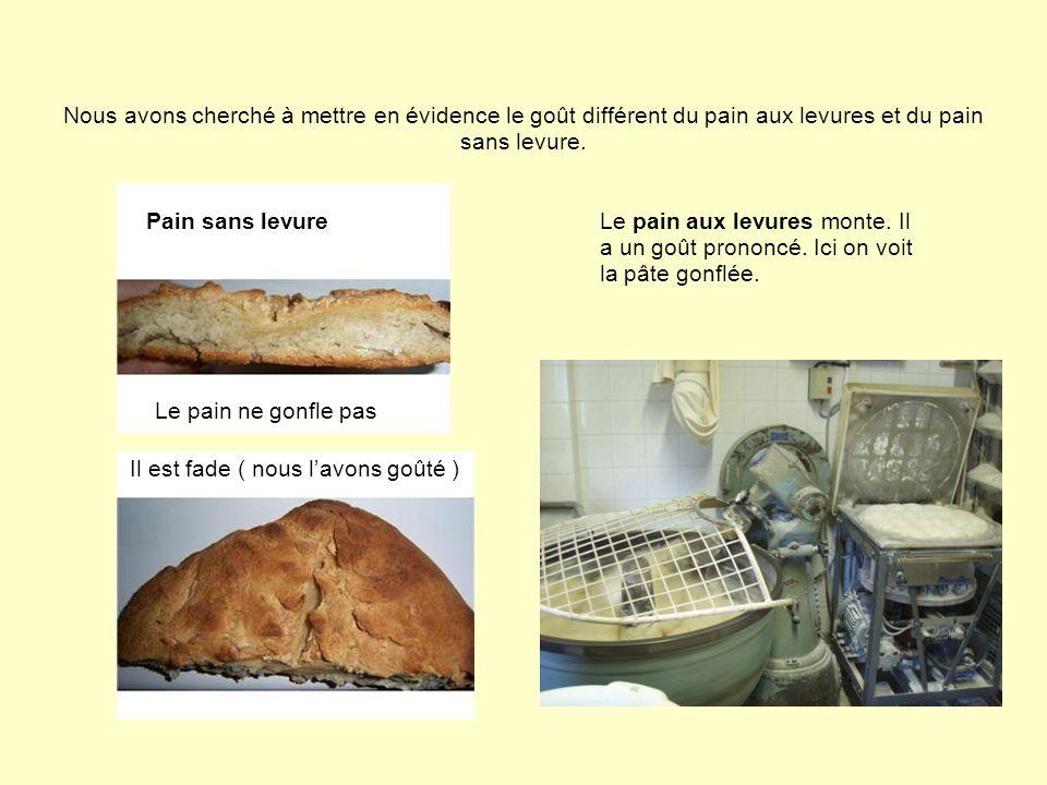 I-3 Deux types de fabrication dans une même région En effet, les ingrédients créent une réelle différence de goût puisqu à Matha et à Royan les boulangers n utilisent pas les mêmes composants de fabrication.