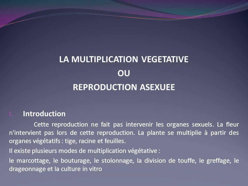 LA MULTIPLICATION VEGETATIVE OU REPRODUCTION ASEXUEE I. Introduction Cette reproduction ne fait pas intervenir les organes sexuels. La fleur n'intervi