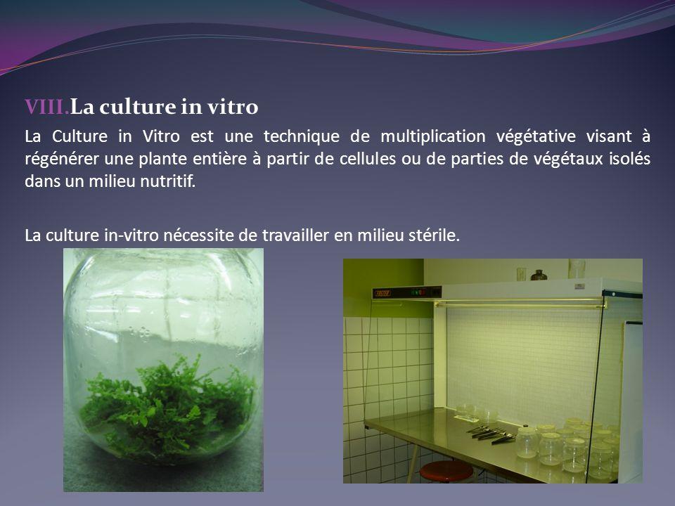 VIII. La culture in vitro La Culture in Vitro est une technique de multiplication végétative visant à régénérer une plante entière à partir de cellule