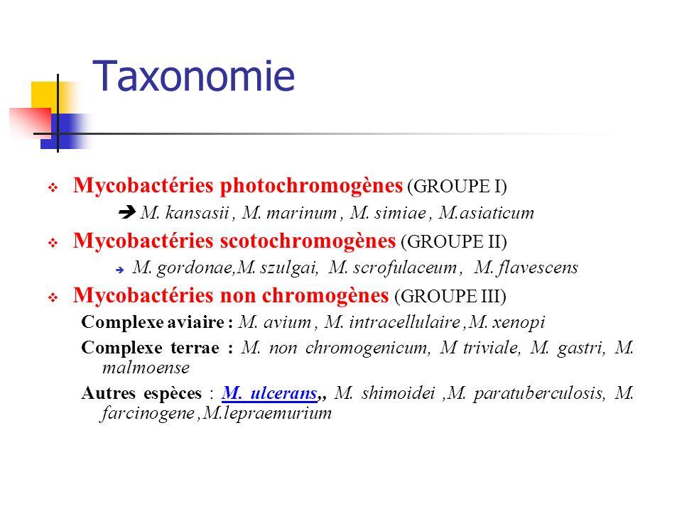 Taxonomie Mycobactéries photochromogènes (GROUPE I) M. kansasii, M. marinum, M. simiae, M.asiaticum Mycobactéries scotochromogènes (GROUPE II) M. gord