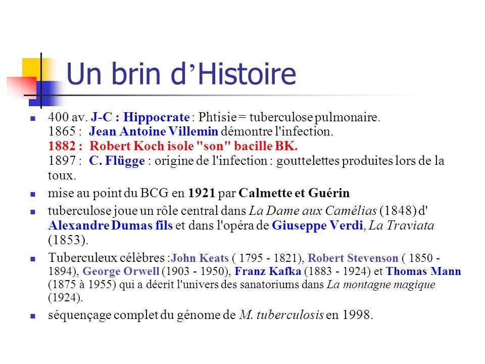 Un brin d Histoire 400 av. J-C : Hippocrate : Phtisie = tuberculose pulmonaire. 1865 : Jean Antoine Villemin démontre l'infection. 1882 : Robert Koch