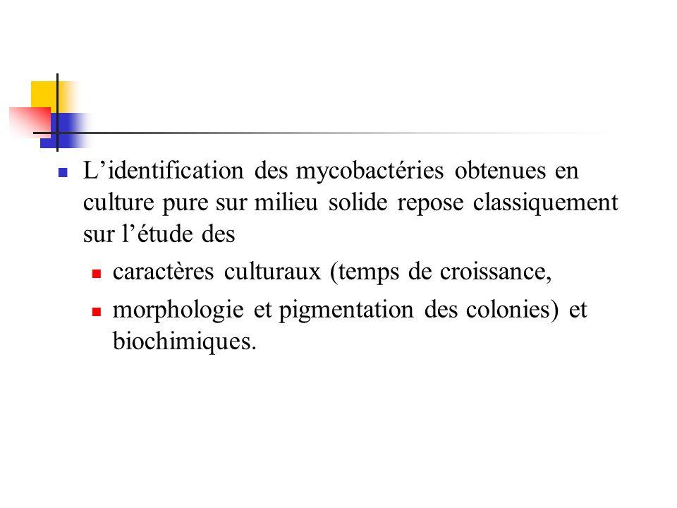 Lidentification des mycobactéries obtenues en culture pure sur milieu solide repose classiquement sur létude des caractères culturaux (temps de croiss