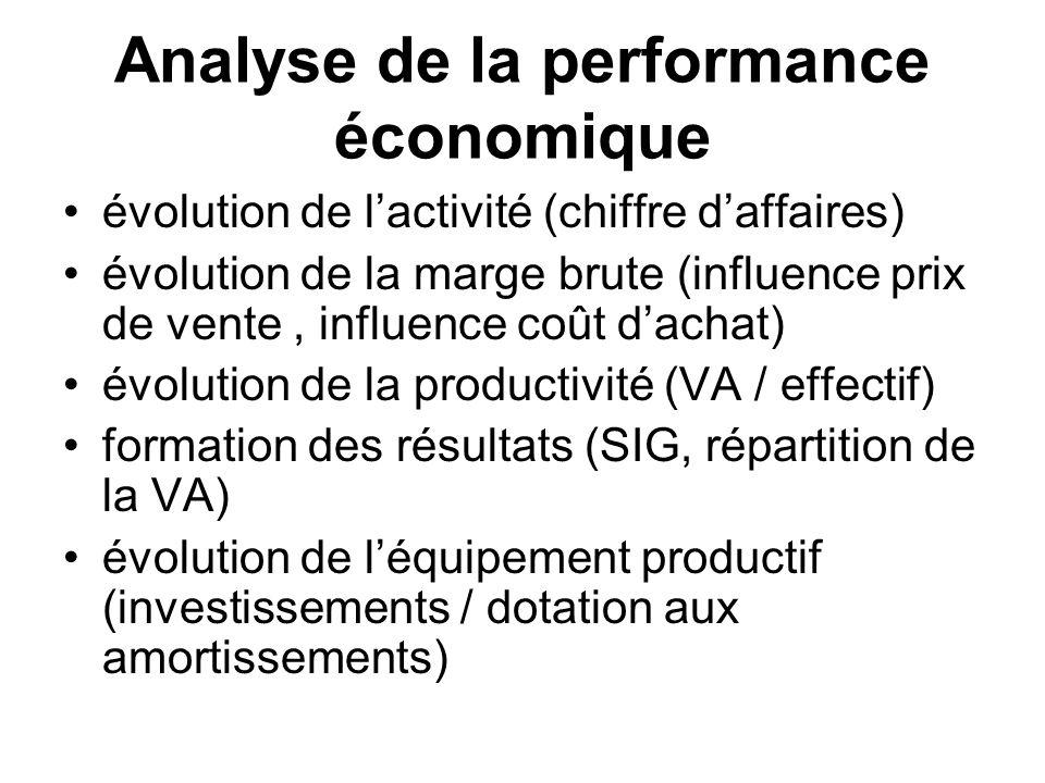 Analyse de la performance économique évolution de lactivité (chiffre daffaires) évolution de la marge brute (influence prix de vente, influence coût d