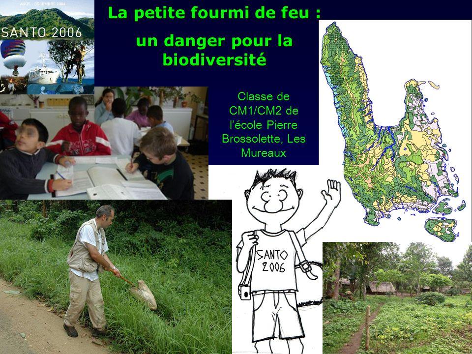 La petite fourmi de feu : un danger pour la biodiversité Classe de CM1/CM2 de lécole Pierre Brossolette, Les Mureaux