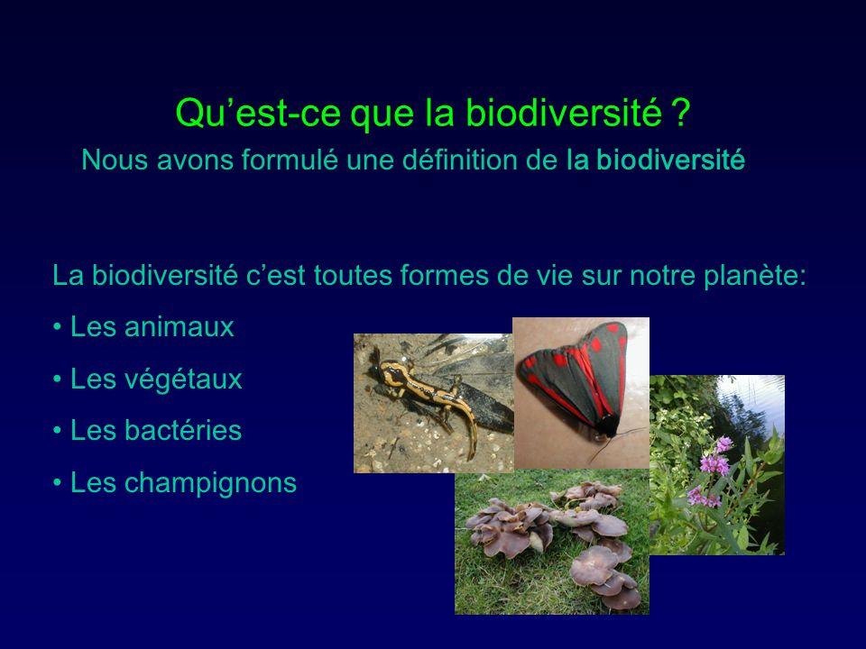 Quest-ce que la biodiversité ? La biodiversité cest toutes formes de vie sur notre planète: Les animaux Les végétaux Les bactéries Les champignons Nou