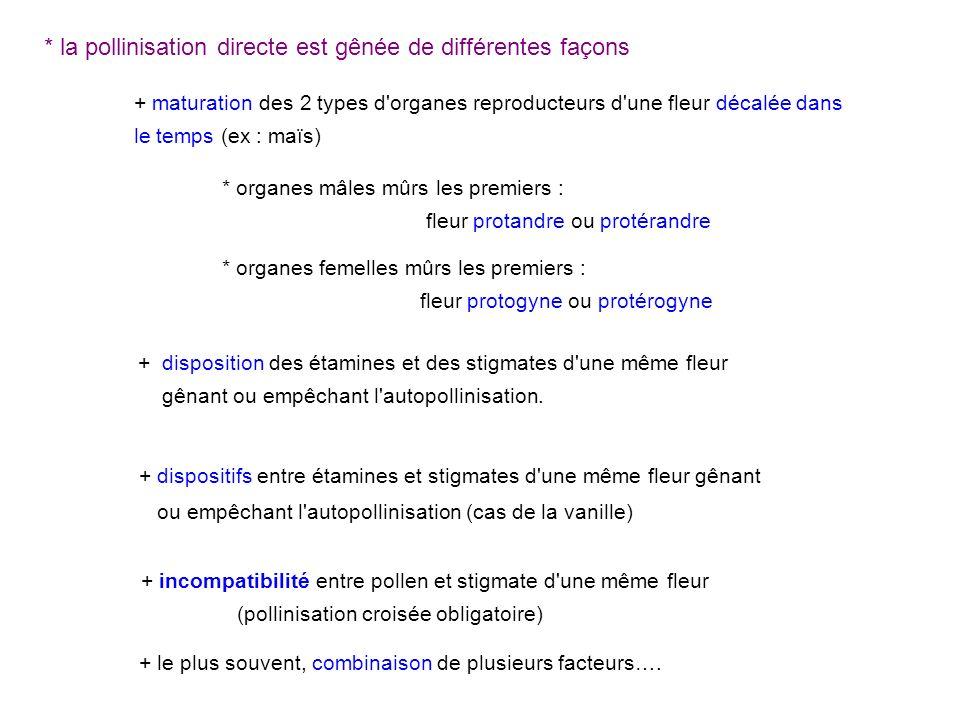 * la pollinisation directe est gênée de différentes façons + maturation des 2 types d'organes reproducteurs d'une fleur décalée dans le temps (ex : ma