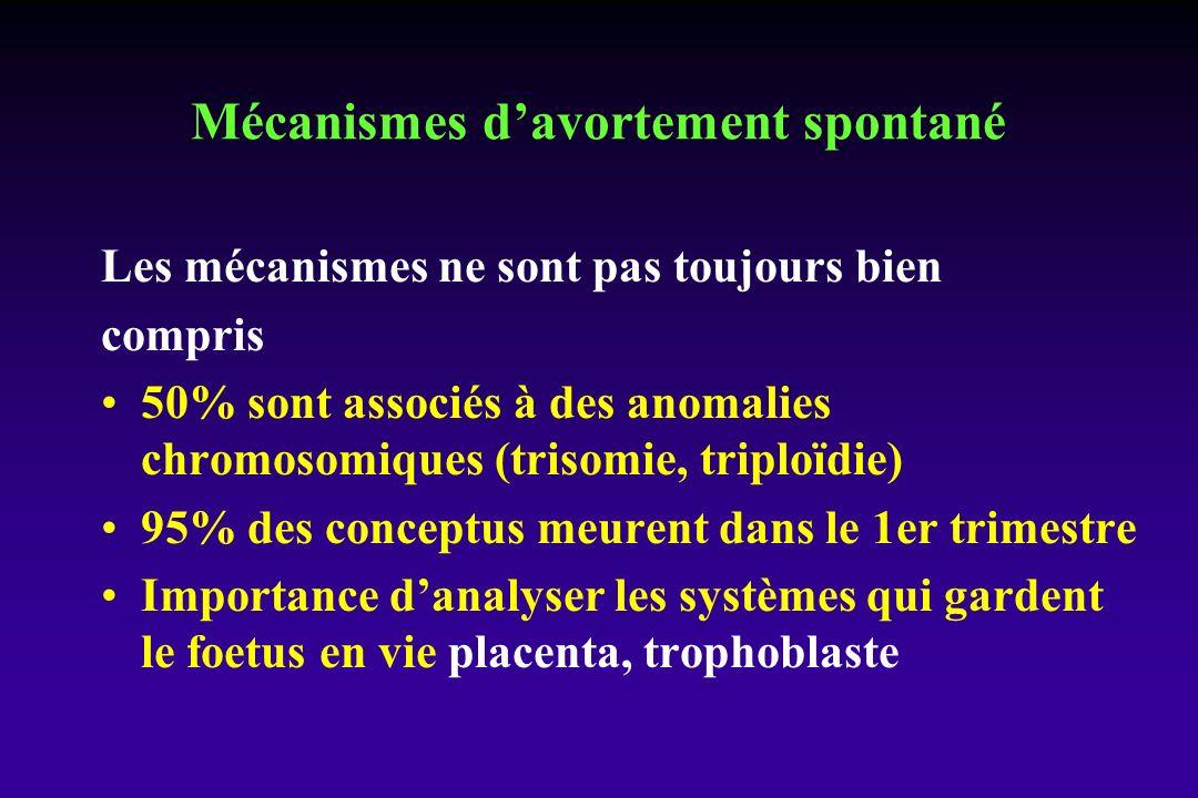 Les mécanismes ne sont pas toujours bien compris 50% sont associés à des anomalies chromosomiques (trisomie, triploïdie) 95% des conceptus meurent dans le 1er trimestre Importance danalyser les systèmes qui gardent le foetus en vie placenta, trophoblaste Mécanismes davortement spontané