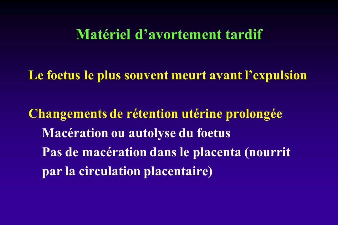 Le foetus le plus souvent meurt avant lexpulsion Changements de rétention utérine prolongée Macération ou autolyse du foetus Pas de macération dans le placenta (nourrit par la circulation placentaire) Matériel davortement tardif