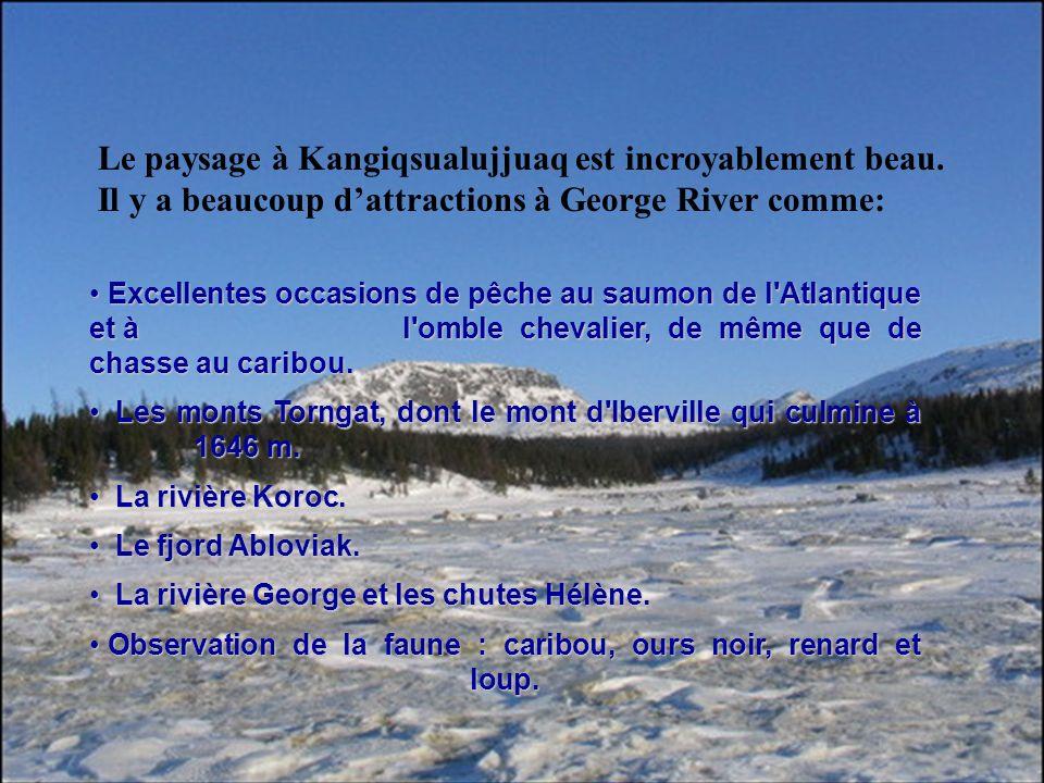 Le paysage à Kangiqsualujjuaq est incroyablement beau. Il y a beaucoup dattractions à George River comme: Excellentes occasions de pêche au saumon de