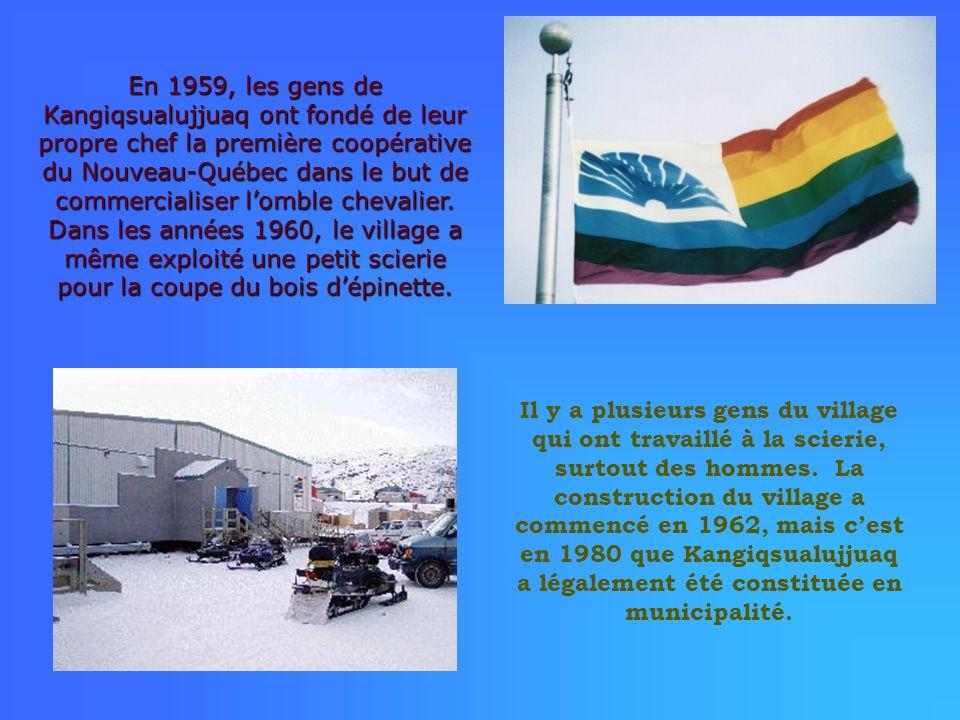 En 1959, les gens de Kangiqsualujjuaq ont fondé de leur propre chef la première coopérative du Nouveau-Québec dans le but de commercialiser lomble che