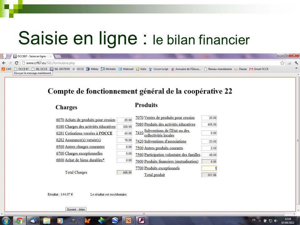 Saisie en ligne : le bilan financier