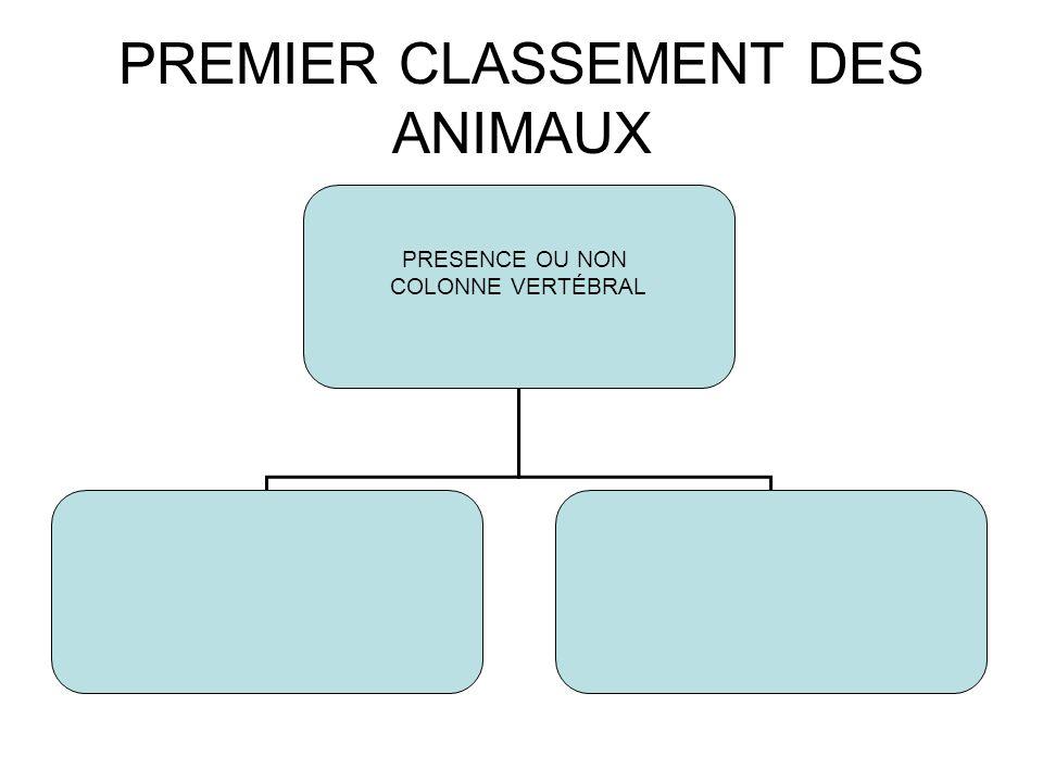 PREMIER CLASSEMENT DES ANIMAUX PRESENCE OU NON COLONNE VERTÉBRAL