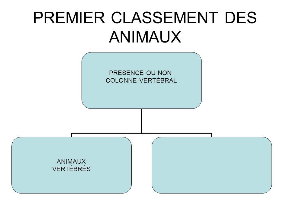 PREMIER CLASSEMENT DES ANIMAUX PRESENCE OU NON COLONNE VERTÉBRAL ANIMAUX VERTÉBRÉS