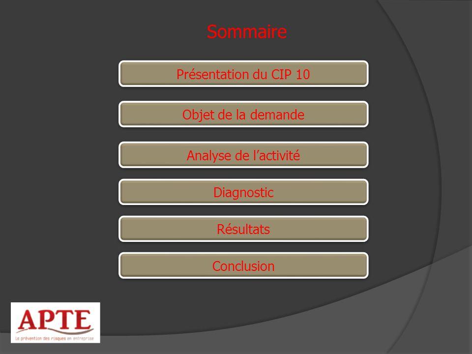 Conclusion Sommaire Présentation du CIP 10 Résultats Diagnostic Analyse de lactivité Objet de la demande