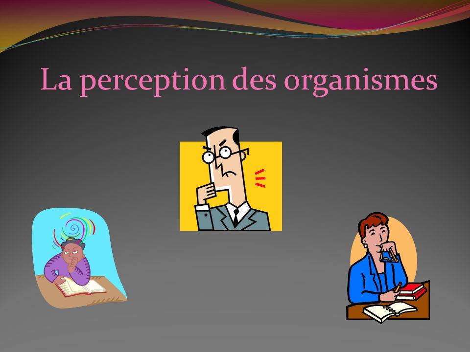 La perception des organismes