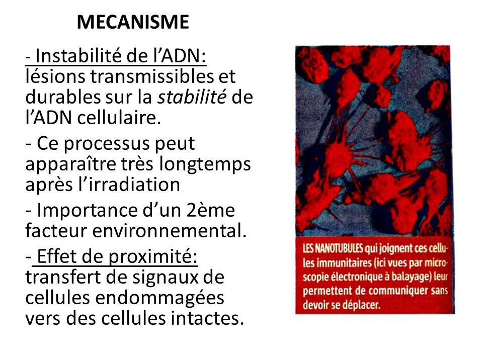 MECANISME - Instabilité de lADN: lésions transmissibles et durables sur la stabilité de lADN cellulaire.