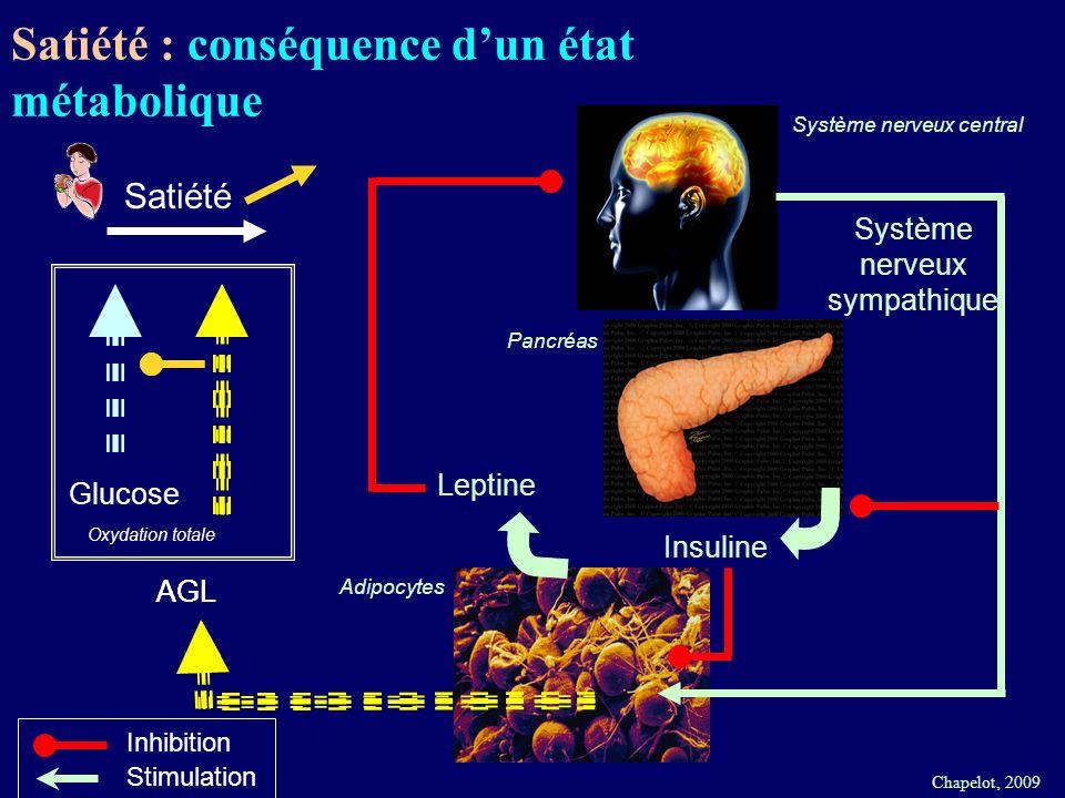 Chapelot, 2009 Système nerveux central Adipocytes Leptine AGL Système nerveux sympathique Insuline Satiété Oxydation totale Glucose Inhibition Stimula