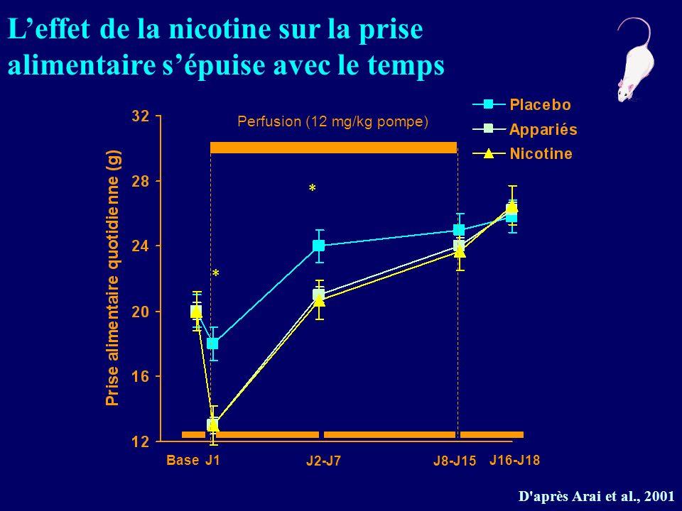 D'après Arai et al., 2001 * * Perfusion (12 mg/kg pompe) BaseJ1 J2-J7J8-J15 J16-J18 Leffet de la nicotine sur la prise alimentaire sépuise avec le tem