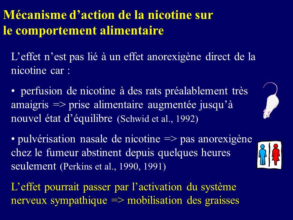 Leffet nest pas lié à un effet anorexigène direct de la nicotine car : perfusion de nicotine à des rats préalablement très amaigris => prise alimentai