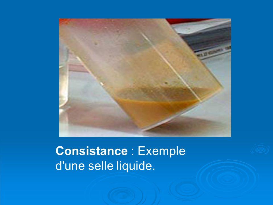 Consistance : Exemple d'une selle liquide.